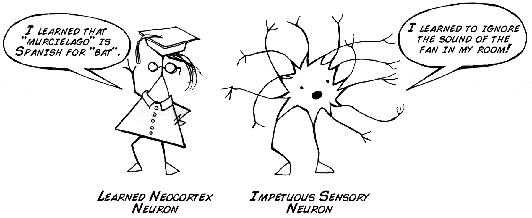 impetuousneuron_small
